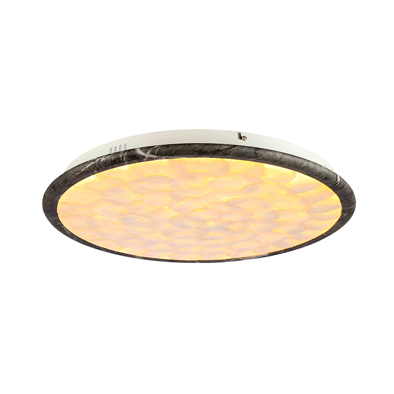 Modern Simple Living Room LED Shell  manufacturer NC9257C-20